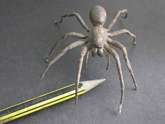 Casting Insects in Metal